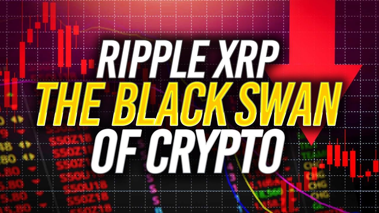 Is Ripple XRP Vs. SEC the MAJOR BLACK SWAN EVENT of Crypto?